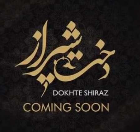 tgvb 1 دانلود آهنگ امید حاجیلی دخت شیراز