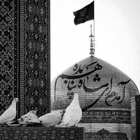 Mohammadali Karimkhani Amadam Ey Shah Musico.ir  دانلود آهنگ آمدم ای شاه پناهم بده محمد علی کریمخانی