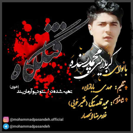 Mohammad Pasande Ghatlgah Musico.ir  دانلود مداحی محمد پسنده قتلگاه